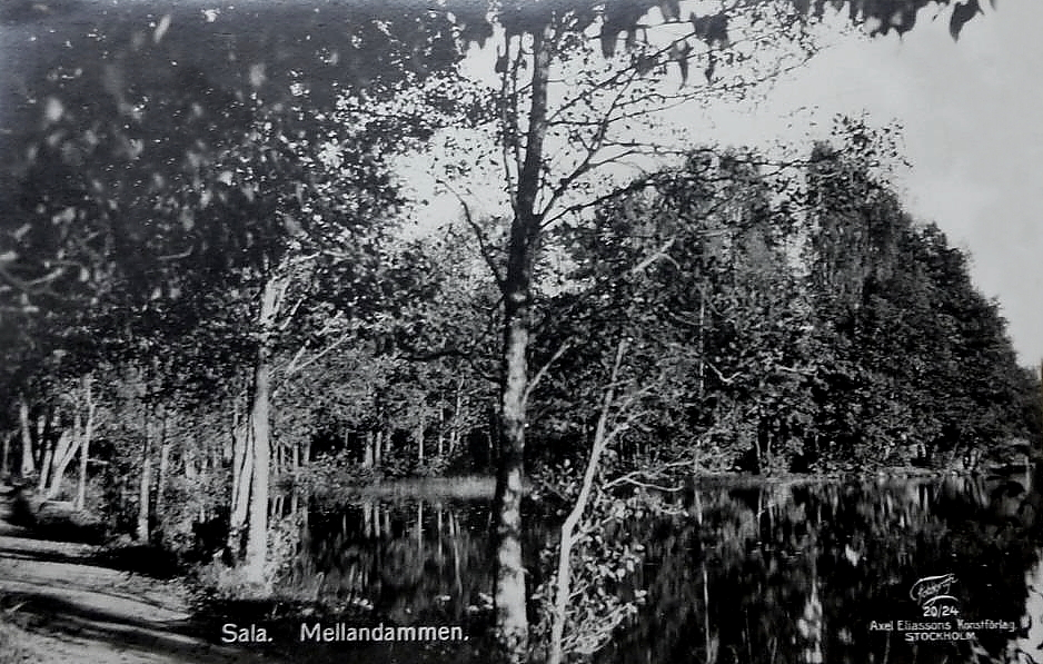 Sala Mellandammen