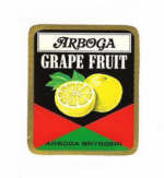Arboga Bryggeri AB, Grape Fruit